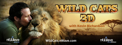 nWave Wild Cats 3D Email Signature