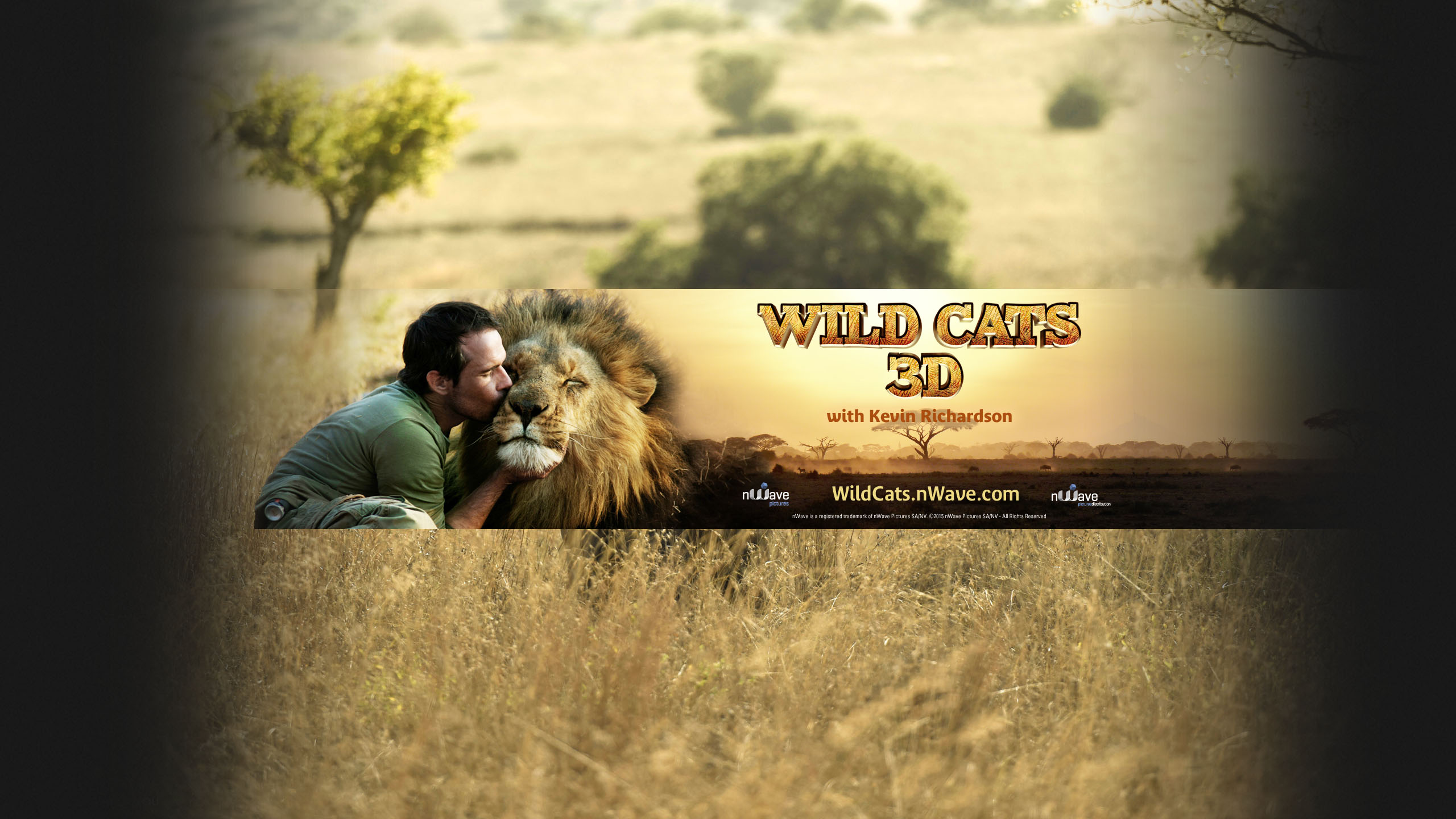 Wild Cats 3D YouTube Cover