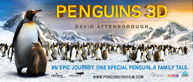 Penguins 3D Email Signature