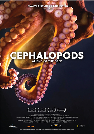 Cephalopods: Aliens of the Deep